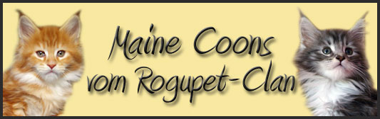 Rogupet - Clan